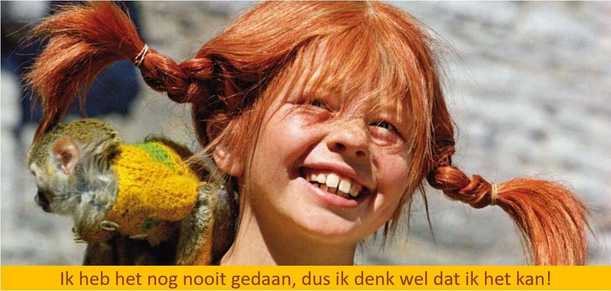 Better Life Coach Loopbaanbegeleiding - Quote Pippi Langkous